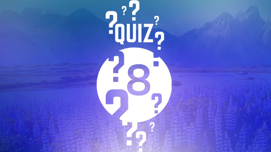 Test Your Knowledge! Heaven Quiz #8