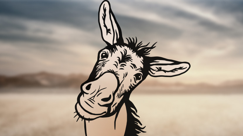 A Talking Donkey... and Other Unlikely Beasts