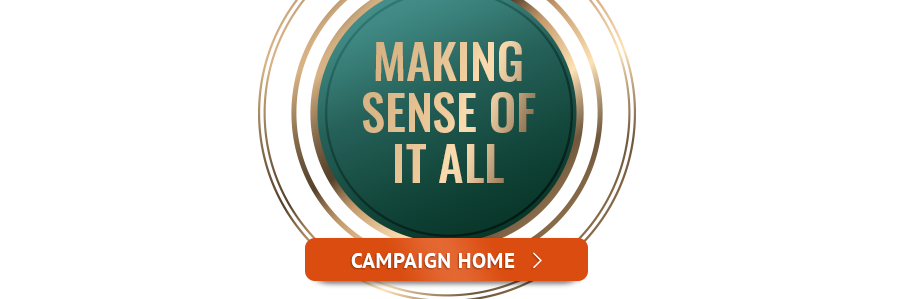 Making Sense of It All: Campaign Home