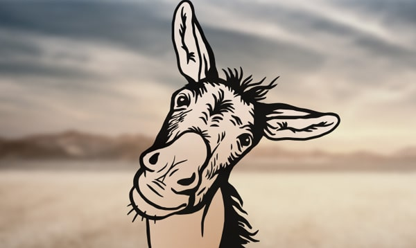 A Talking Donkey...and Other Unlikely Beasts
