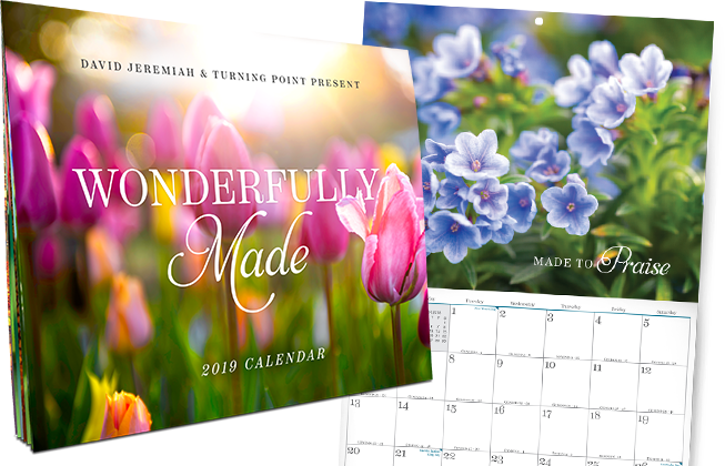 Wonderfully Made, Turning Points Exclusive 2019 Calendar