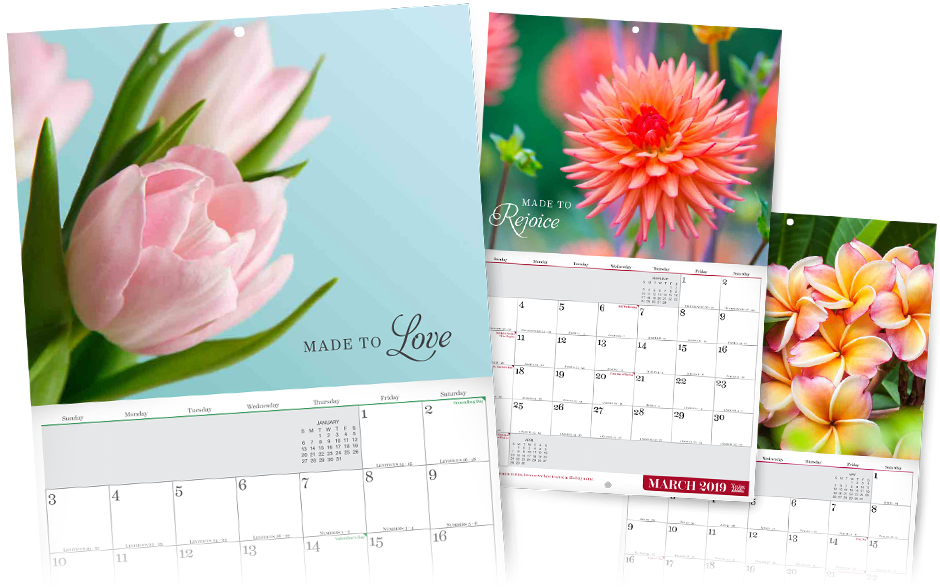 wonderfully made 2019 calendar davidjeremiah org