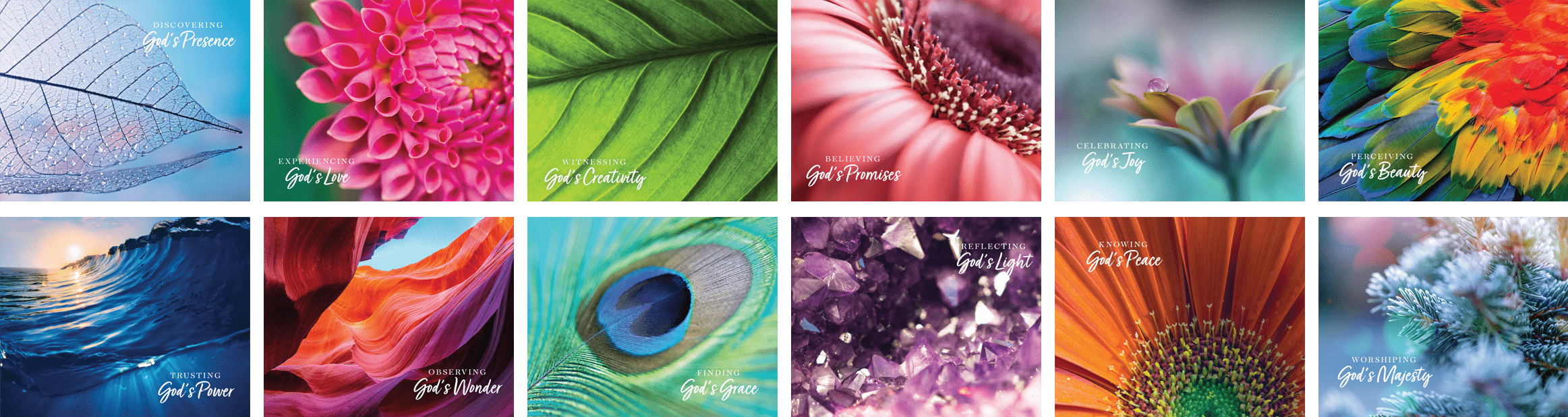Colors of Creation 2021 Calendar
