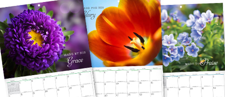 2019 Exclusive Turning Point Calendar - Wonderfully Made