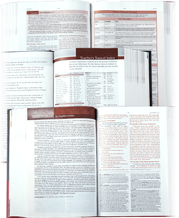 Top 4 Reasons You Need a Study Bible