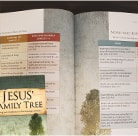 Jesus' Family Tree: Seeing God's Faithfulness in the Genealogy of Christ
