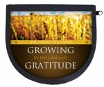 Growing in the Grace of Gratitude
