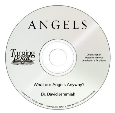 What are Angels Anyway? Image