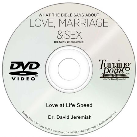 Love at Life Speed Image