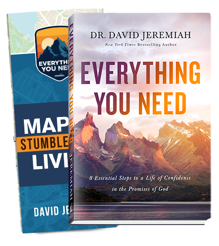 Everything You Need (hardcover book)