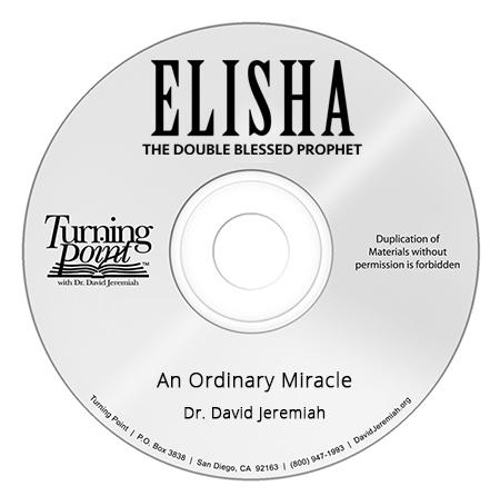 An Ordinary Miracle Image