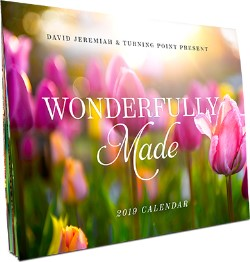 Wonderfully Made Turning Point 14 Month Calendar Image