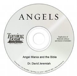 Angel Mania and the Bible Image