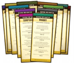 Slaying The Giants Scripture Cards Image
