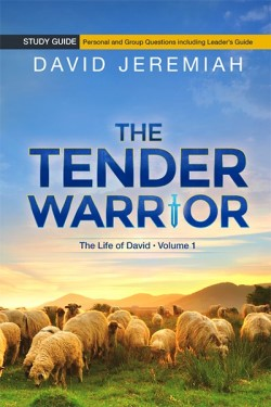 The Tender Warrior Study Guide Vol. 1  Image