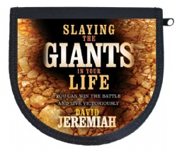 Slaying the Giants in Your Life CD album Image