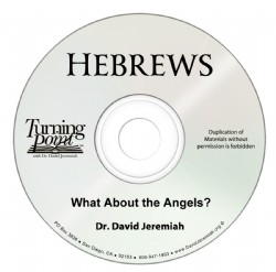 What About the Angels? Image