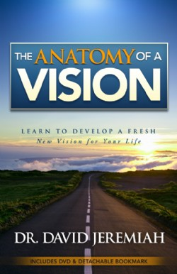 The Anatomy of A Vision  Image