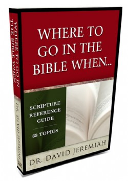 Where to Go in the Bible When… Image
