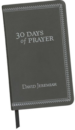 30 Days of Prayer Image