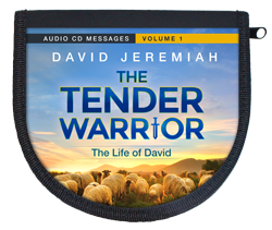 The Tender Warrior - Vol. 1  Image
