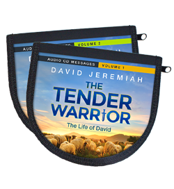 The Tender Warrior - Vol .1-2 Image