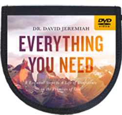 Everything You Need DVD album Image