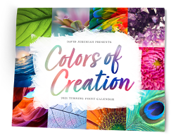 Colors of Creation 2021  Image