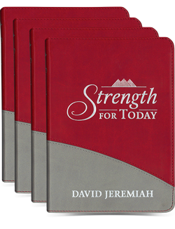 4-Pack of Strength for Today Image