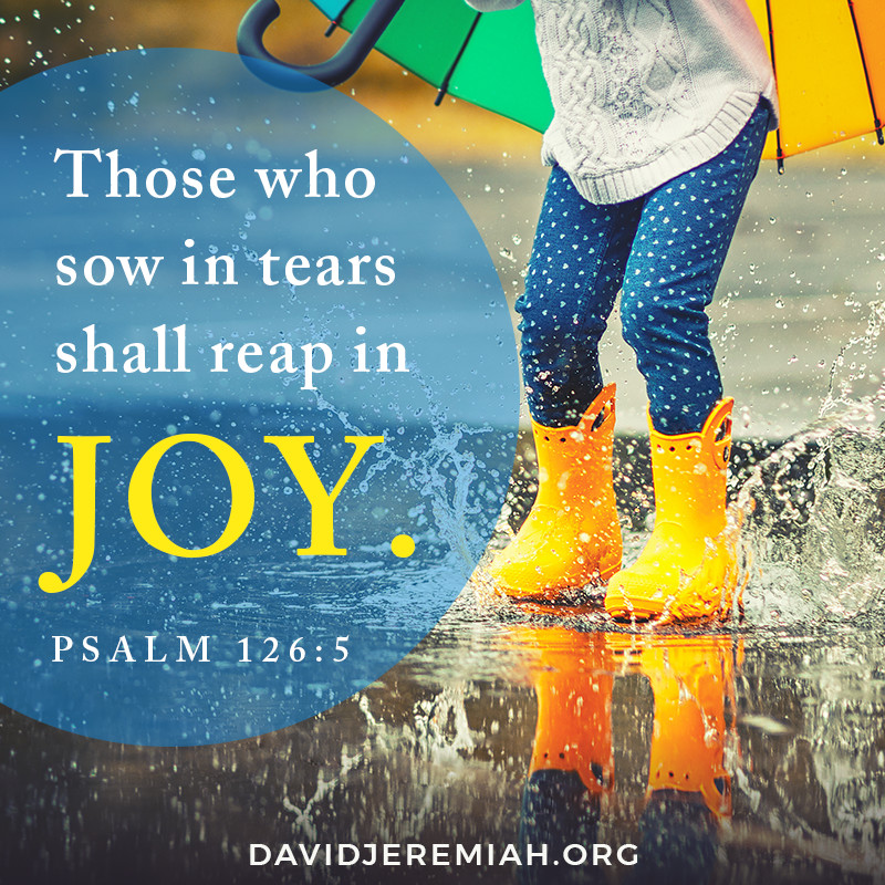 Those who sow in tears shall reap in joy. - Psalm 126:5