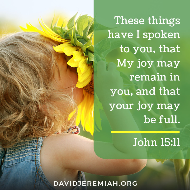 These things have I spoken to you, that My joy may remain in you, and that your joy may be full. - John 15:11
