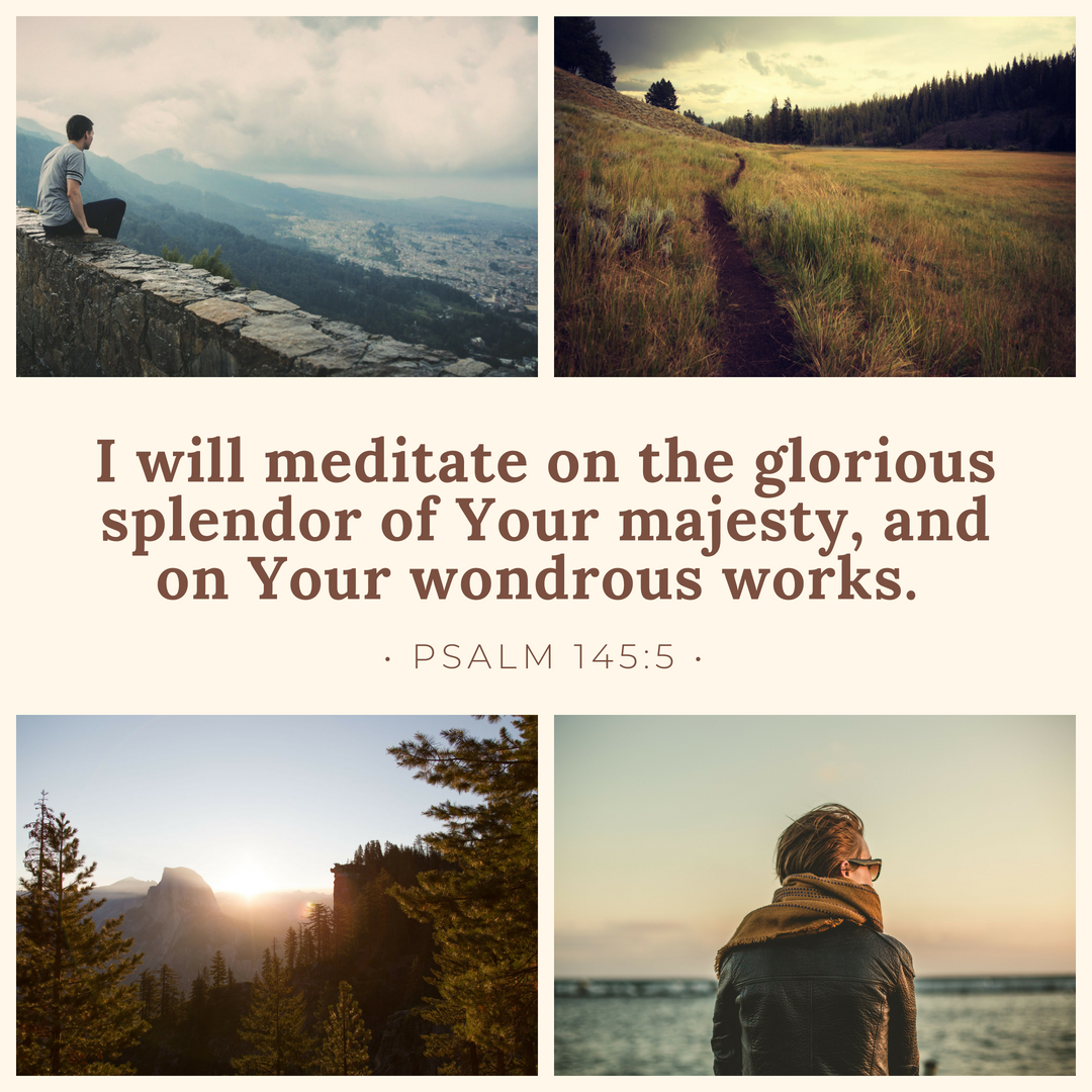 I will meditate on the glorious splendor of Your majesty, and on Your wondrous works. Psalm 145:5